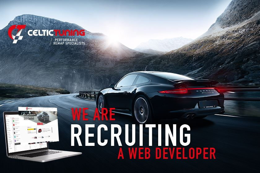 Web Developer Job